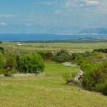 seaview_accommodation-South-Africa_001