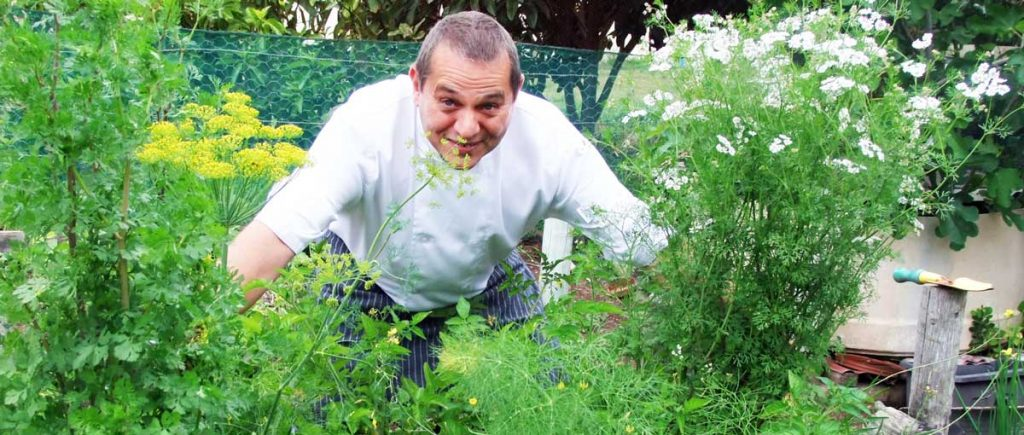 Chef Dino in the organic Panorama garden, giving the herbs some love, while getting even more inspired.